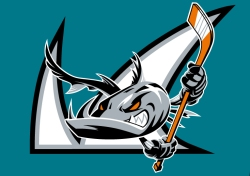 san-jose-barracuda